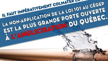 La non application de la loi 101 au cégep est la plus grande porte ouverte à l'anglicisation du Québec Il faut impérativement colmater la brèche