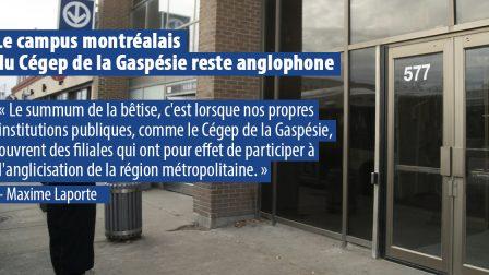 Thumbnail Cégep gaspésie 18 nov 2020